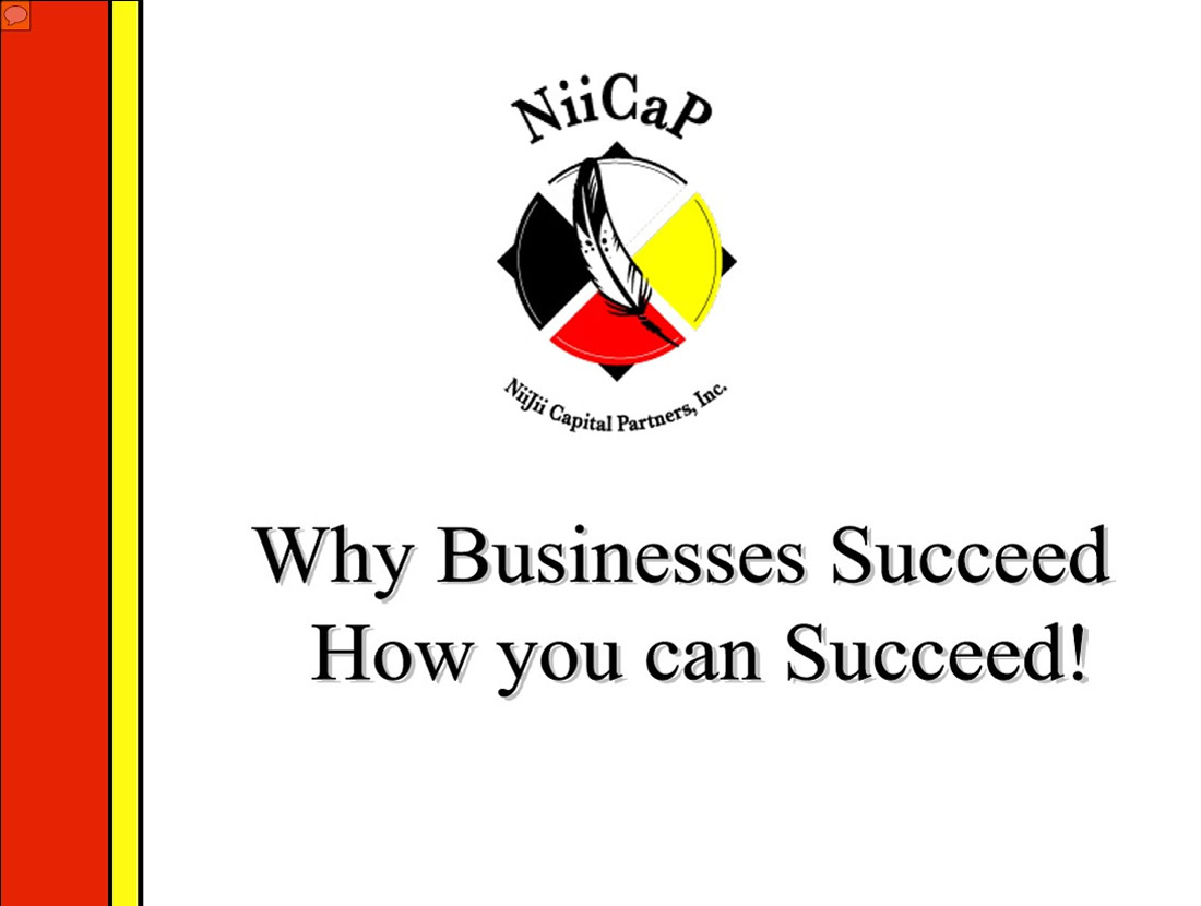 cover-Why-Businesses-Succeed